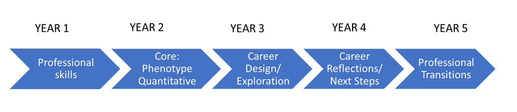 Program Curriculum Diagram